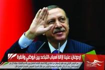 إردوغان: علينا إزالة أسباب التباعد بين أبوظبي وأنقرة