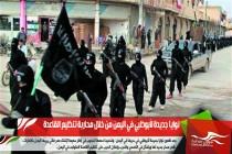 نوايا جديدة لأبوظبي في اليمن من خلال محاربة تنظيم القاعدة