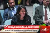 مندوبة الإمارات لدى الأمم المتحدة .. تعرب عن قلقها تجاه تزويد ميليشيا الحوثي بأسلحة إيرانية