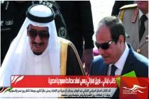 كاتب لبناني .. فريق إماراتي يسعى لعقد مصالحة سعودية مصرية
