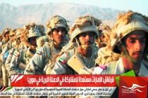 قرقاش: الإمارات مستعدة للمشاركة في الحملة البرية في سوريا