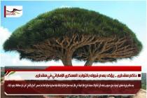 حاكم سقطرى .. يؤكد بعدم قبوله بالتواجد العسكري الإماراتي في سقطرى