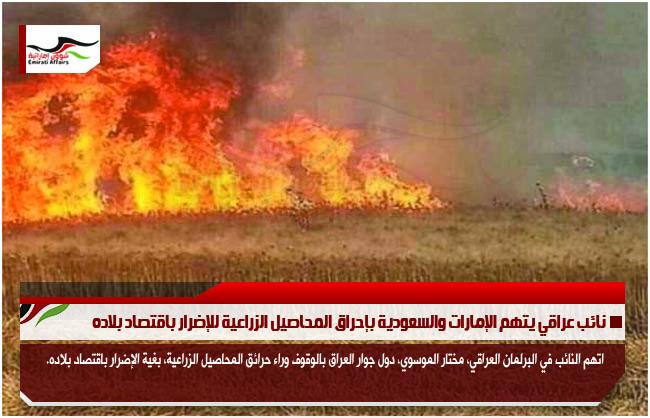 نائب عراقي يتهم الإمارات والسعودية بإحراق المحاصيل الزراعية للإضرار باقتصاد بلاده