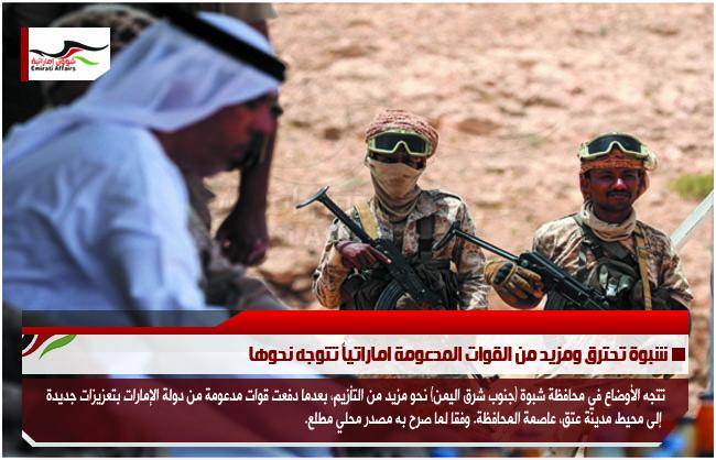 شبوة تحترق ومزيد من القوات المدعومة اماراتياً تتوجه نحوها