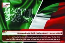 انشاء مجلس تنسيق ما بين الإمارات والسعودية