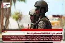 سياسي يمني .. الإمارات تبتز السعودية في الحديدة