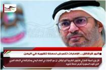 أنور قرقاش .. الإمارات تتعرض لحملة تشويه في اليمن