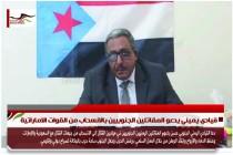 قيادي يميني يدعو المقاتلين الجنوبيين بالانسحاب من القوات الاماراتية