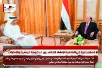 قمة رباعية في القاهرة لإنهاء الخلاف بين الحكومة اليمنية والإمارات
