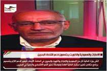 عبدالخالق عبدالله يحرّض ضد قطر بعد دعمها تركيا