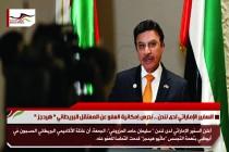 السفير الإماراتي لدى لندن .. ندرس إمكانية العفو عن المعتقل البريطاني