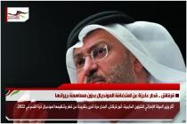 قرقاش .. قطر عاجزة عن استضافة المونديال بدون مساهمة جيرانها