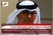 أنور قرقاش: قطر تحاول شق صف الدول التي تقاطعها عبر تسريبات غير صحيحة