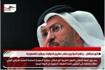 أنور قرقاش .. يتهم الحوثيين بنهب ملايين الدولارات ويشيد بالسعودية