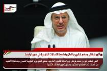 أنور قرقاش وسامح شكري يؤكدان رفضهما التدخلات الخارجية في سوريا وليبيا