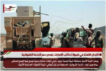 اللجان الأمنة في شبوة تطالب الإمارات بعدم دعم النخبة الشبوانية
