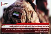 الحكومة اليمنية تدرس انهاء التواجد الإماراتي ضمن التحالف في اليمن