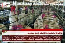 الإمارات تحظر استيراد كافة الطيور الداجنة من الكويت