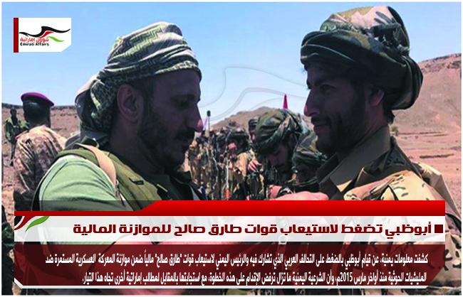 أبوظبي تضغط لاستيعاب قوات طارق صالح للموازنة المالية