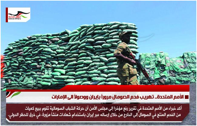 الأمم المتحدة.. تهريب فحم الصومال مروراً بإيران ووصولاُ الى الإمارات