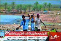 ناشطون يمنيون يطالبون بوقف التمدد الاماراتي في جزيرةسقطرى