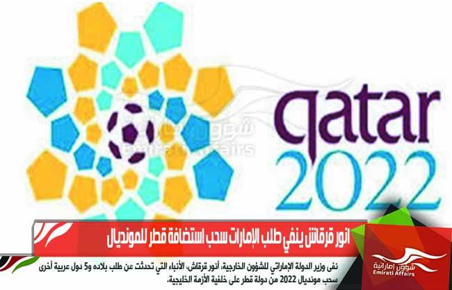 انور قرقاش ينفي طلب الإمارات سحب استضافة قطر للمونديال