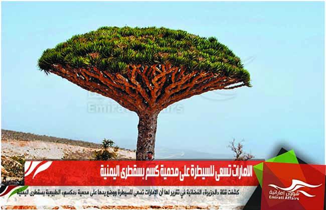 الامارات تسعى للسيطرة على محمية كسم بسقطرى اليمنية