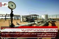 أنور قرقاش: نعمل على وضع شروط لعودة انتاج النفط في ليبيا