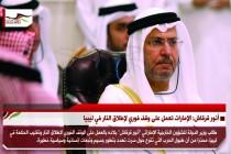 أنور قرقاش: الإمارات تعمل على وقف فوري لإطلاق النار في ليبيا
