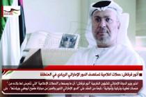 أنور قرقاش: حملات اعلامية تستهدف الدور الإماراتي الريادي في المنطقة