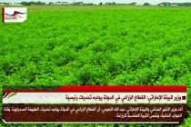 وزير البيئة الإماراتي: القطاع الزراعي في الدولة يواجه تحديات رئيسية