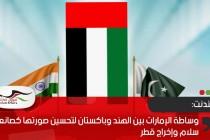 إندبندنت: وساطة الإمارات بين الهند وباكستان لتحسين صورتها كصانعة سلام وإخراج قطر