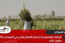 الإمارات والسعودية تدعمان القطاع الزراعي في السودان بـ400 مليون دولار