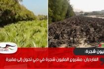 الغارديان: مشروع المليون شجرة في دبي تحول إلى مقبرة