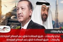تركيا والإمارات.. طريق المصالحة شاق رغم المصالح المتبادلة