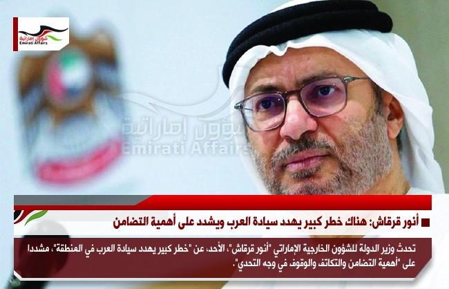 أنور قرقاش: هناك خطر كبير يهدد سيادة العرب ويشدد على أهمية التضامن