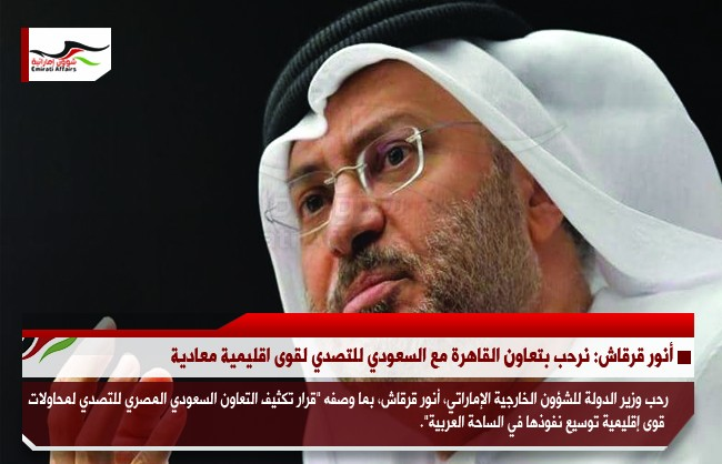 أنور قرقاش: نرحب بتعاون القاهرة مع السعودي للتصدي لقوى اقليمية معادية
