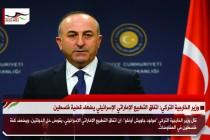 وزير الخارجية التركي: اتفاق التطبيع الإماراتي الإسرائيلي يضعف قضية فلسطين