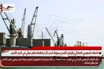 التحالف السعودي الإماراتي باليمن: أضرار بسفينة شحن إثر ارتطامها بلغم حوثي في البحر الأحمر